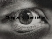 Chapter 4_final
