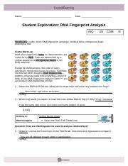 DNAFingerprint - Name Date Student Exploration DNA ...
