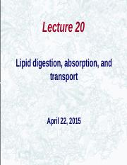 Huxford_lecture_20(1)