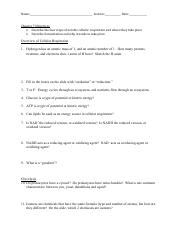 07 Lecture Questions.pdf