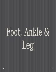 Foot%2C+ankle+_+leg-student.pptx