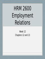 HRM 2600 lecture S Chummar--employment relations