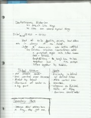 Judaism Deuteronimic Historian Notes
