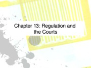 Ch 13 regulation and the courts