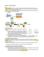 Cell Biology 1140 Notes