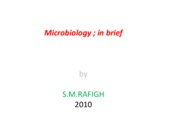 Microsoft PowerPoint - Microbiolog; in brief