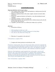 Assisted Reading Questions L4.pdf