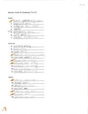 hacer un curriculum vitae ejemplos