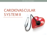 Lecture III - Cardiovascular system II