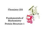 233Chapter_8.0_Protein_Structure(2)