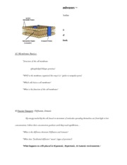 Cell Membranes Notes