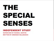 The Special Senses Presentation Taste