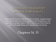 chapter34 and 35 - stems, roots and transport