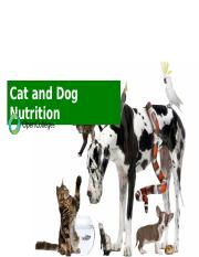 Cat and Dog Nutrition.pptx