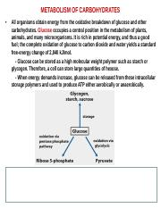 Chapter VII - Metabolism of carbohydrates