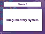 Ch 5 Integumentary System