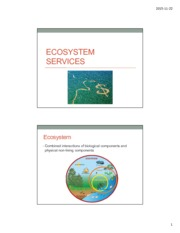 Lecture 28 Ecosystem Services