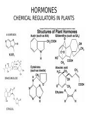 25_HORMONES_PLANTS_OUTLINE(1) (1).ppt