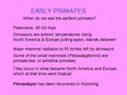 Early Primates 2010