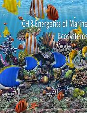 CH 3 Energetics of Marine Ecosystems-Revised.pdf