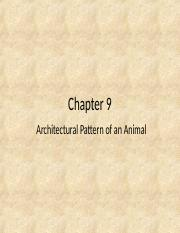 Chapter 9 - New.ppt