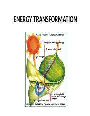 Chapter 7- Energy Tranformation (1).ppt