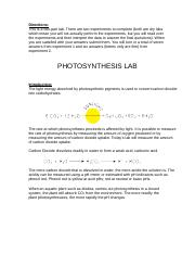 Photosynthesis Lab instruction.doc