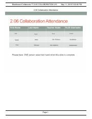2.06 collaboration.pdf