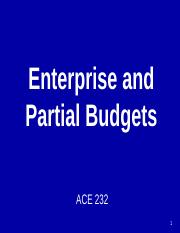 PPT 12 Enterprise & Partial Budgeting