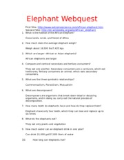ElephantWebquest