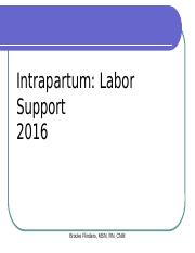 IP Labor Support 2016.pptx