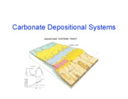 11-10 Carbonate Depositional Systems