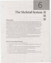 Ch 6 Skeletal The Skeletal System Overview Can You Imagine What