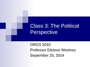 Class 3 The Political Perspective