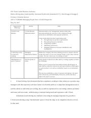 IDV Team Global Business Authority Assignment 1.docx