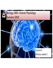 BIOL 2005 : Human Physiology - Carleton University - Course Hero