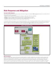 Risk-Management_Week 7.pdf