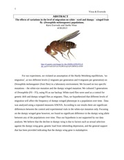 The effects of variations in the level of migration on Fruit Flies
