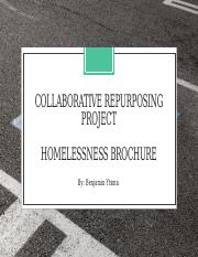 Collaborative Repurposing Project- Benjamin Ytsma-11591568.pptx