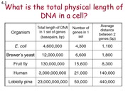 LIFS1901 2015 Spring EH2 DNA Replication Cell Division and Reproduction Additional Slides