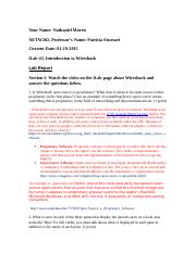 NETW202_W2_Lab_Report_Template.docx