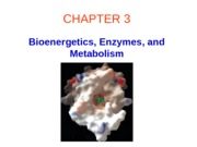 Ch03 Enzymes and &Metabolism