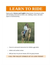 Word 1B Gilbert- Horseback Riding Lessons Flyer