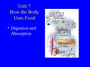 Digestion_and_Absorption