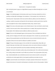 mkt223-0001_writing assignment 2_CourtneySurles.docx