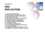 DNA Replication-9-18-15