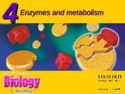 Chapter 4 Enzymes and Metabolism