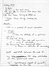 Lecture and Discussion Notes 1