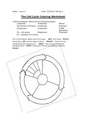 G2 5 During what phase of the cell cycle does cell division ...