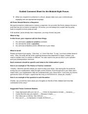 Module Eight Lesson One Completion Assignment Two Guided Comments Sheet (1).doc